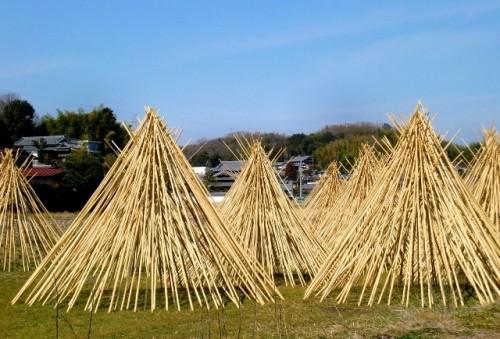 """伝統的工芸品""""高山茶筌""""は鷹山一族の一子相伝の技、竹を干す風景は生駒高山の冬の風物詩"""