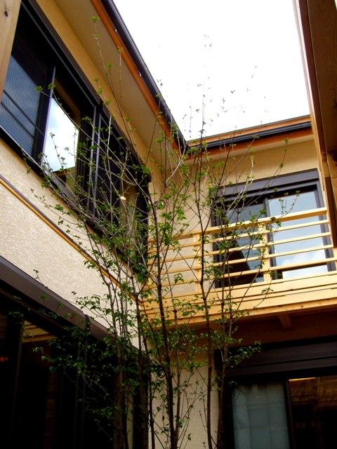 豊中空中回廊の家4