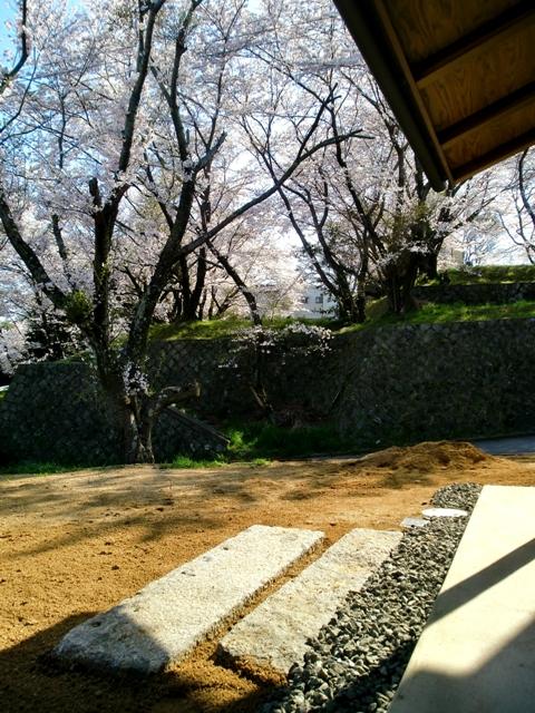 南東の庭先
